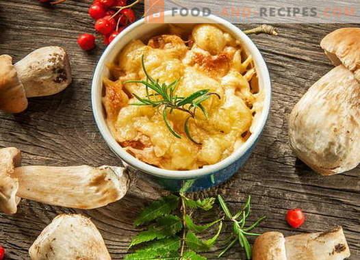 Julienne de poulet aux champignons - les meilleures recettes. Comment faire cuire la julienne de poulet.