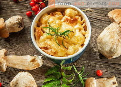 Chicken julienne with mushrooms - the best recipes. How to cook chicken julienne.