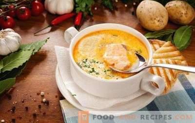 Fischsuppe - Suppe mit einzigartigem Geschmack! Rezepte für verschiedene Fischsuppe mit Konserven, frische Kadaver und Filets, Kohl, Bohnen