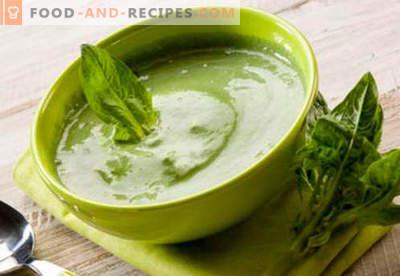 Purée d'épinards - les meilleures recettes. Comment faire cuire correctement et délicieusement les épinards en purée.