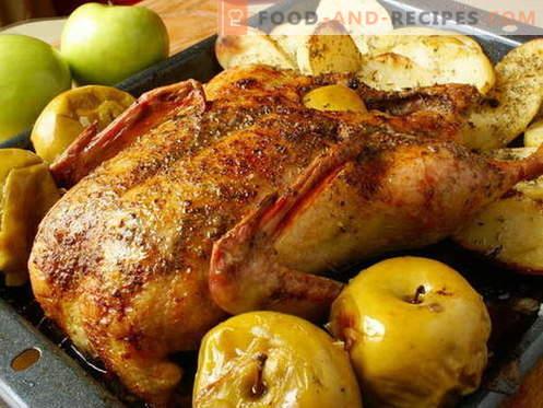 Canard aux pommes - les meilleures recettes. Comment bien et savoureux cuire un canard avec des pommes.