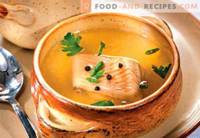 Bouillon de poisson - les meilleures recettes. Comment cuire correctement et savoureux bouillon de poisson.