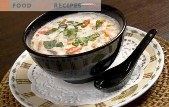 La soupe au lait de coco est un jeu de goût! Recettes de différentes soupes au lait de coco pour un menu exotique