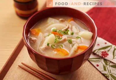 Soupe de soja - recettes éprouvées. Comment bien et savoureux cuire la soupe de soja.