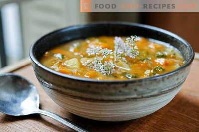 Soupe au poulet - les meilleures recettes. Comment bien et savoureux cuire la soupe au poulet.