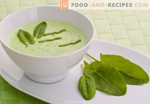 Soupe au bouillon de boeuf - les meilleures recettes. Comment bien et savoureux faire cuire la soupe sur le bouillon de boeuf.