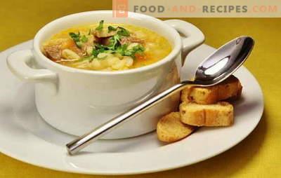 Soupe de canard: légume, avec asperges, riz, pois, épicé. Recettes de soupes de canard savoureuses et riches, soupe de canard