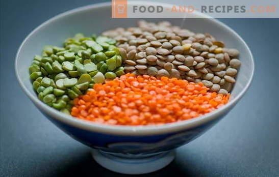 Comment cuire des lentilles rouges, vertes, brunes ou noires Méthodes simples pour cuire les lentilles dans une casserole et dans une cocotte: secrets et astuces