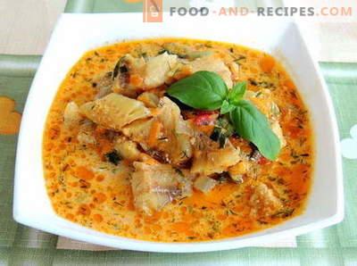 Ragoût de maquereau - les meilleures recettes. Comment cuire correctement et savoureux ragoût de maquereau.