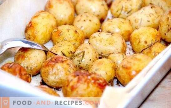 Épices pour pommes de terre: remplissez un peu plus! Cuire, frire, cuire au four de délicieuses pommes de terre