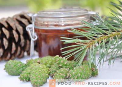 Confiture de pommes de pin: comment cuisiner correctement