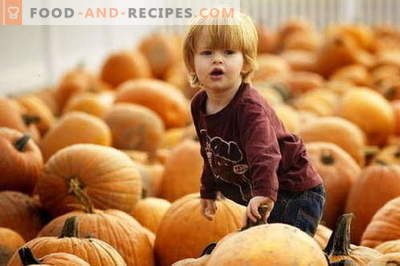 Purée de citrouille pour les enfants - les meilleures recettes. Comment bien et savoureux bébé purée de citrouille.