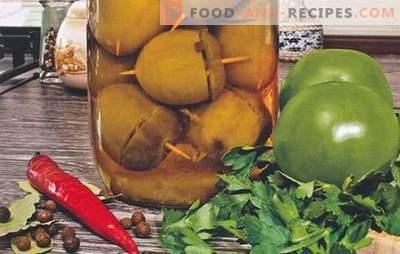 Tomates farcies pour l'hiver: avec n'importe quoi! Variantes de fourrages à la tomate, à la moutarde et au vinaigre pour les tomates farcies à l'hiver