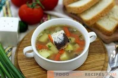 Soupe de poisson en conserve