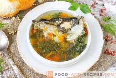 Quelle est la différence entre la soupe de poisson et la soupe de poisson