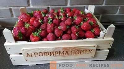 Été fraise. Top news de la saison