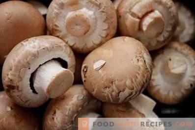 Comment conserver les champignons frais