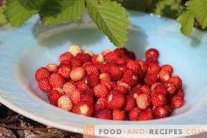 Comment congeler les fraises des bois