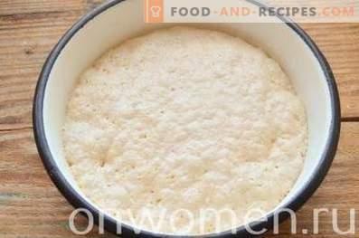 Gâteau de Pâques au lait concentré aux canneberges