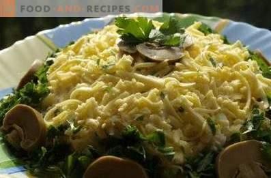 Salades du 23 février