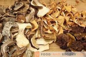 Comment sécher les champignons