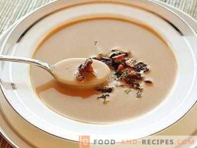 Chanterelle Cream Soup
