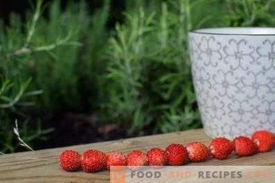 Comment conserver les fraises