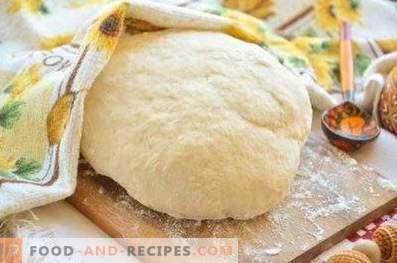 Pâte à ravioli