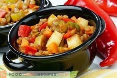 Ragoût de légumes au poulet