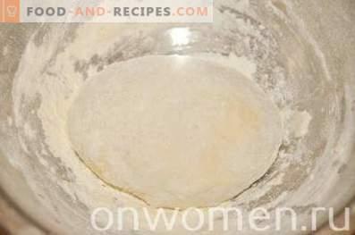 Pizza à la levure avec balyk et mozzarella