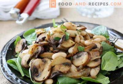 Salade aux champignons sautés - une sélection des meilleures recettes. Comment bien et savoureux faire cuire une salade avec des champignons frits.
