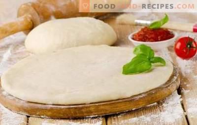 La pâte à pizza au lait est une base savoureuse pour un plat savoureux. Cuire une variété de pâte à pizza au lait: riche, moelleuse, croquante