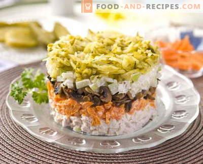 Salade de poulet en couches avec les meilleures recettes. Comment bien et savoureux faire cuire la salade de chou avec du poulet.