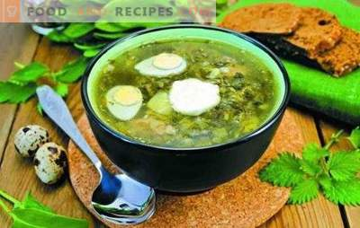 Soupe à l'oseille - rapide, fraîche et savoureuse. Soupe à l'oseille sans viande, sur bouillon d'os, avec poitrine, sur la crème