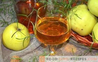 Le vin de pomme à la maison n'est pas facile, mais très simple! Recettes pour faire du vin délicieux à partir de pommes à la maison
