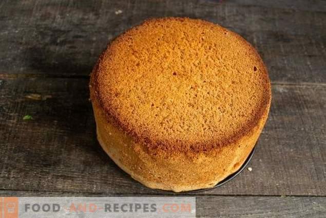 biscuit de gâteau luxuriant pour le gâteau - ne jamais tomber!